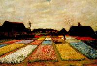 Letti di fiore in olanda 1883