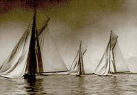 Sonya moyana britomart 1905
