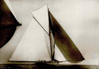 Shamrock I 1899