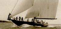 Shamrock V 1931