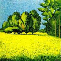 Lampo giallo